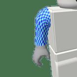 ROBLOX Girl item